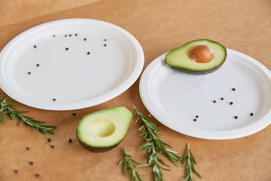 Biodegradowalny okrągły talerz z trzciny cukrowej - DUŻY <br> pulpa - Ø260 - 50 szt.